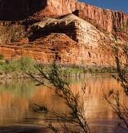 Moab's Amasa Run